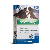 Advantage Caes e Gatos 4,0 ml