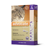 Advocate Gatos 0,8ml